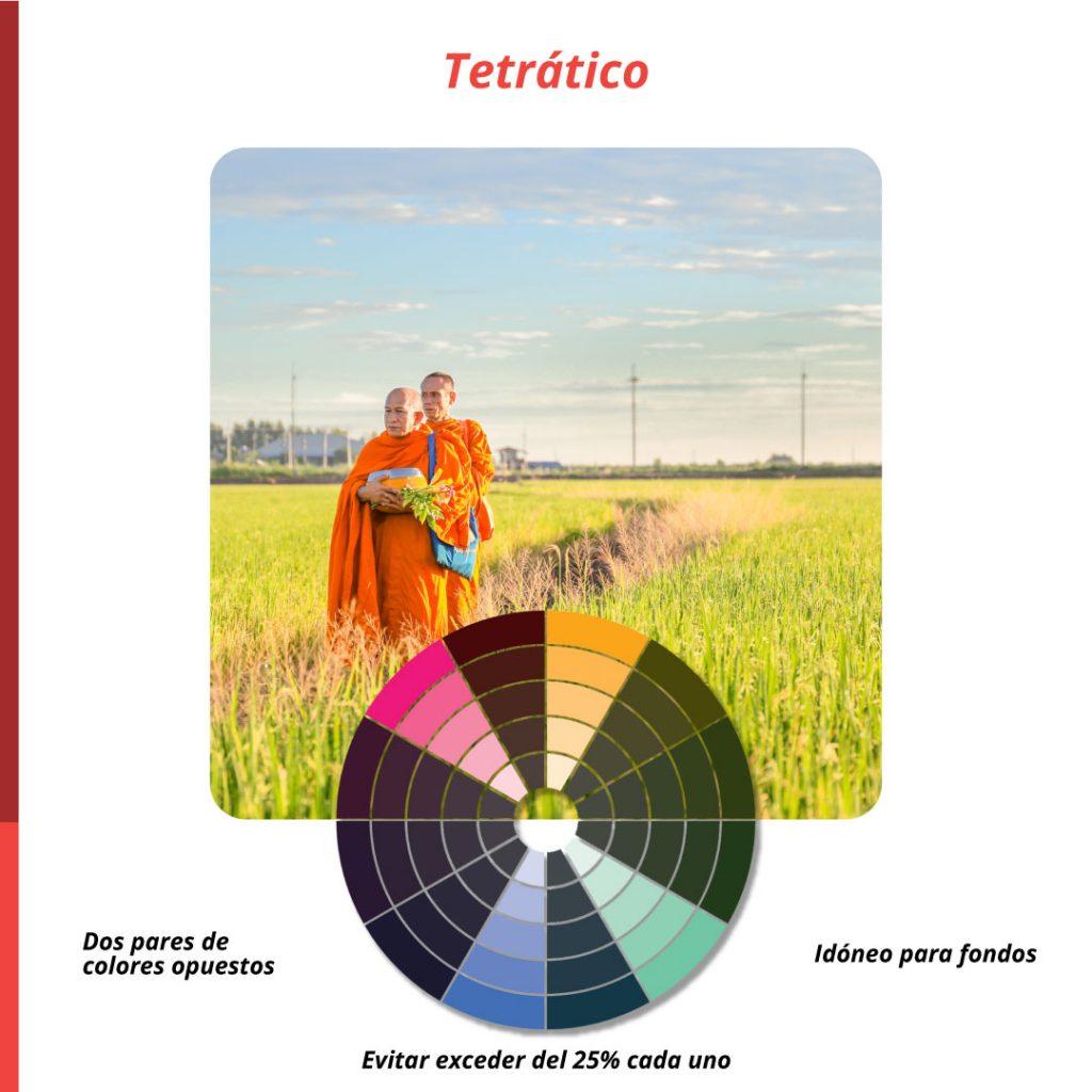armonia-del-color-tetratico